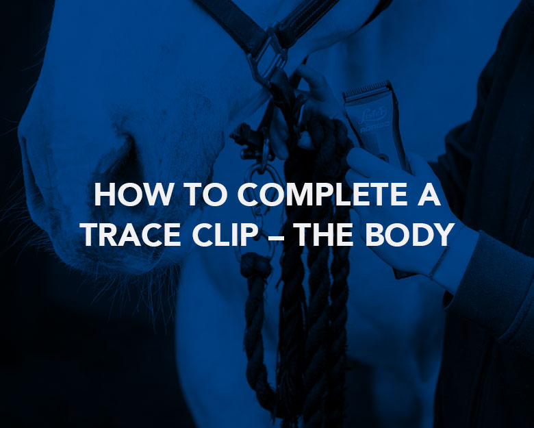 How to Complete a Trace Clip – The Body