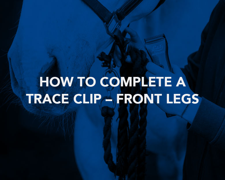 How to Complete a Trace Clip – Front Legs