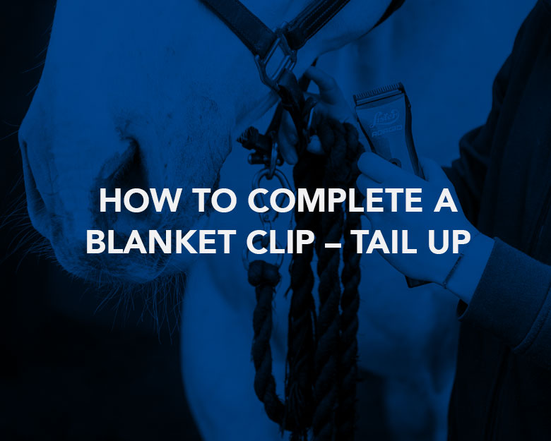 How to Complete a Blanket Clip – Tail Up