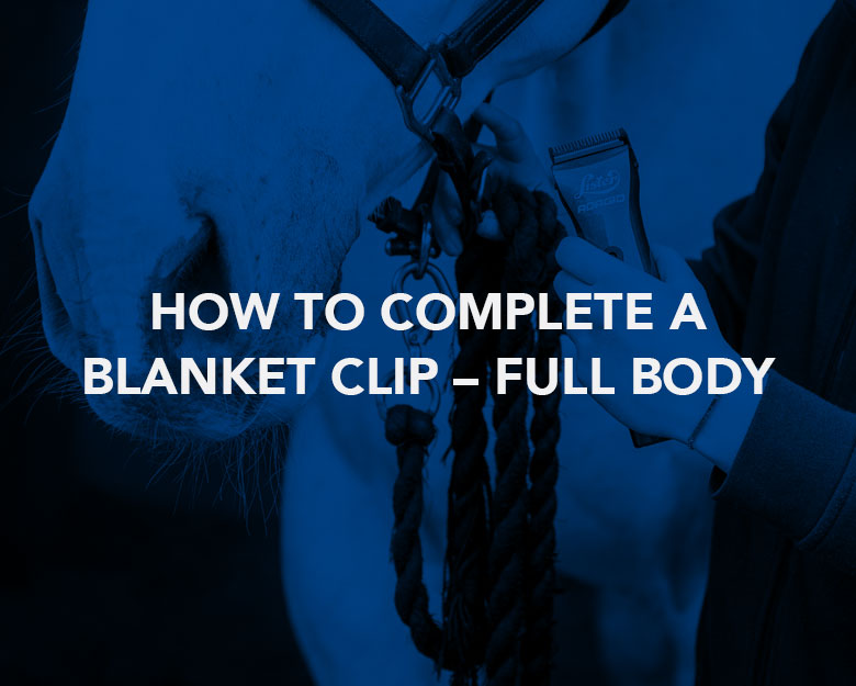 How to Complete a Blanket Clip – Full Body